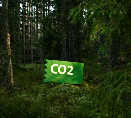 CO2 physical
